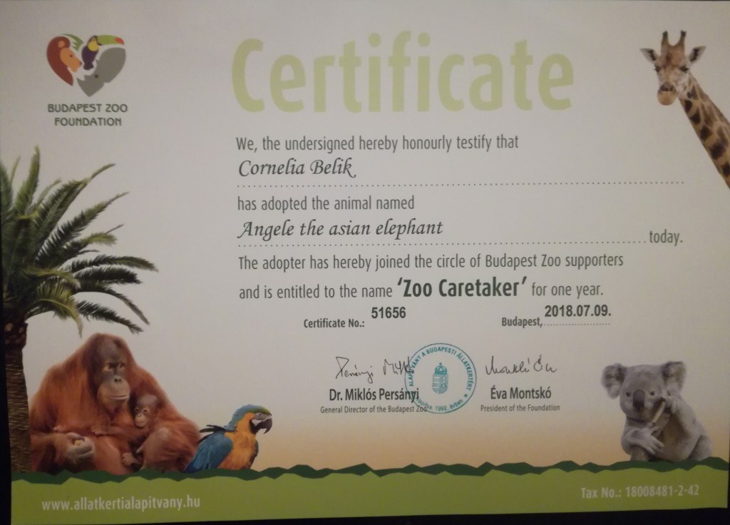 me is foster parent of Angele at Zoo Budapest 2018
