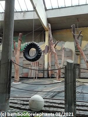 3-in-1-enrichment, Zoo Vienna 08/2021